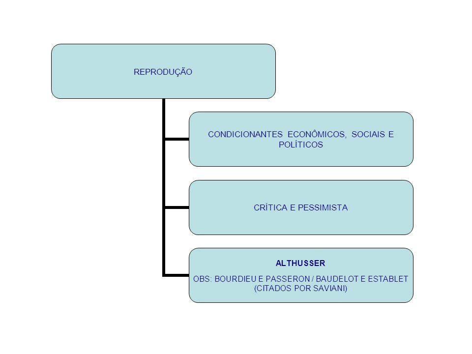 TRANSFORMAÇÃO DEMOCRATIZAÇÃO CRÍTICA, ATIVA, REFLEXIVA E OTIMISTA NÃO CITA REPRESENTANTE