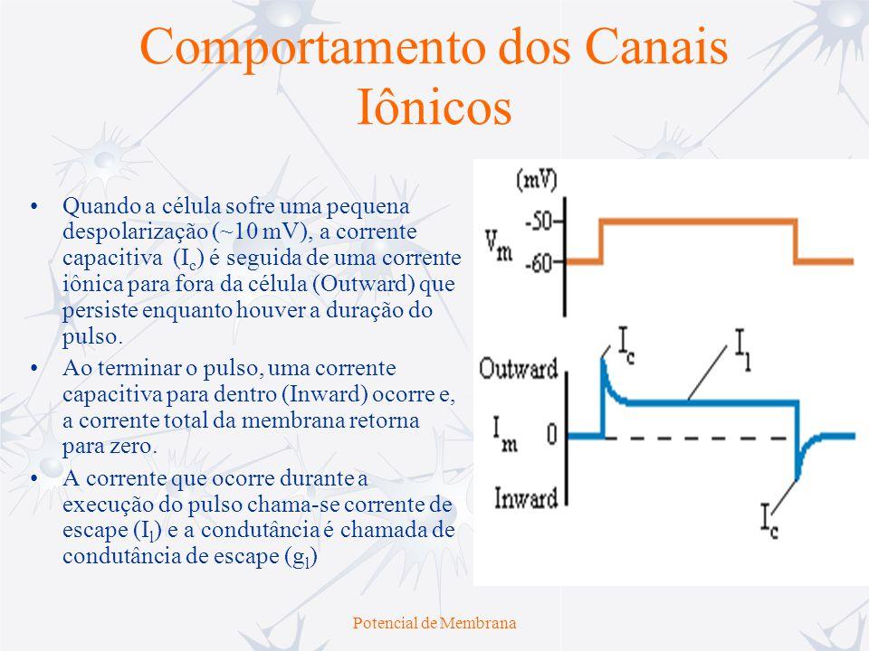 Potencial de Membrana Comportamento dos Canais Iônicos Quando a célula sofre uma alta despolarização, a corrente capacitiva (I c ) e a de escape (I l ) aumentam em amplitude.