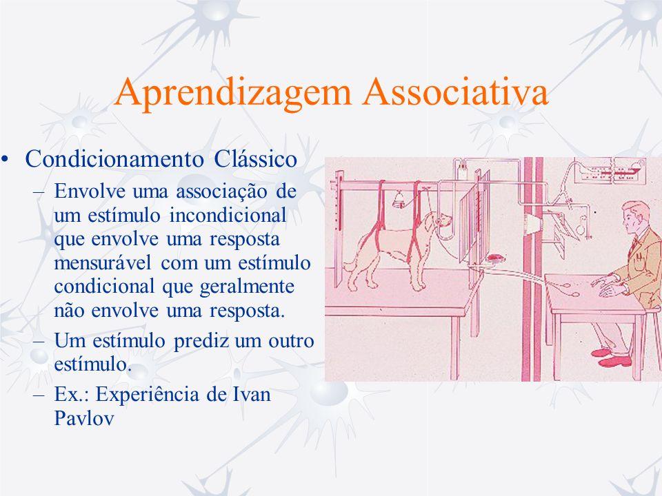 Aprendizagem Associativa Condicionamento Instrumental –O indivíduo aprende associado a uma resposta, a uma ação motora, a um estímulo significante, geralmente uma recompensa, tal como, comida, choque elétrico, cocaína, etc.