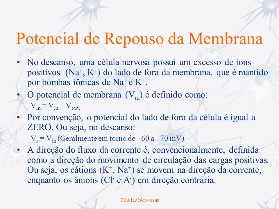 Potencial de Membrana Distribuição Iônica no Repouso --385A - (ânion orgânico) -6056052Cl - +5544050Na + -7520400K+K+ Potencial de Equilíbrio (mV) Líquido Extracelular (mM) Citoplasma (mM) Íon