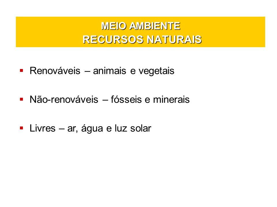 MEIO AMBIENTE Desenvolvimento Sustentável É o uso racional e eficaz dos recursos naturais.