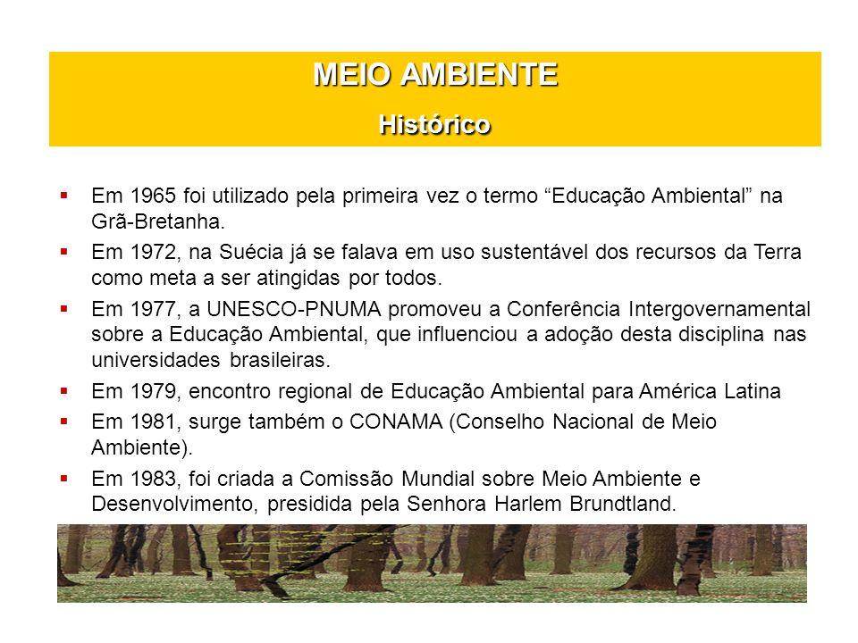 MEIO AMBIENTE Histórico Em 1987, ocorreu a divulgação do Relatório da Comissão Brundtland ou Relatório Nosso Futuro em Comum elaborado pela Comissão Mundial sobre o Meio Ambiente e Desenvolvimento.