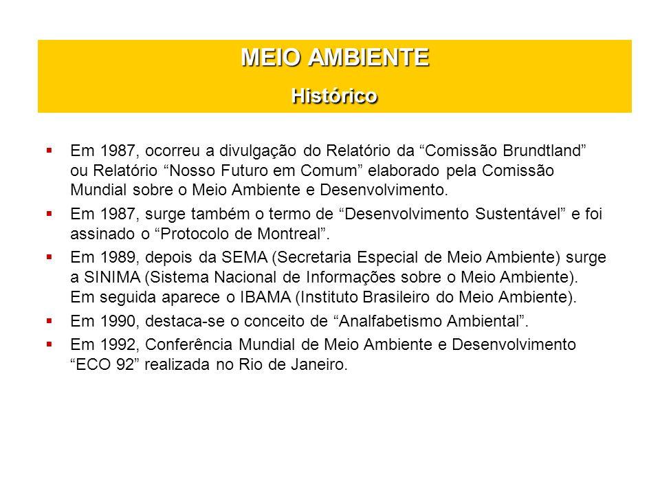 MEIO AMBIENTE Histórico Em 1995, houve a Conferência para o Desenvolvimento Social.