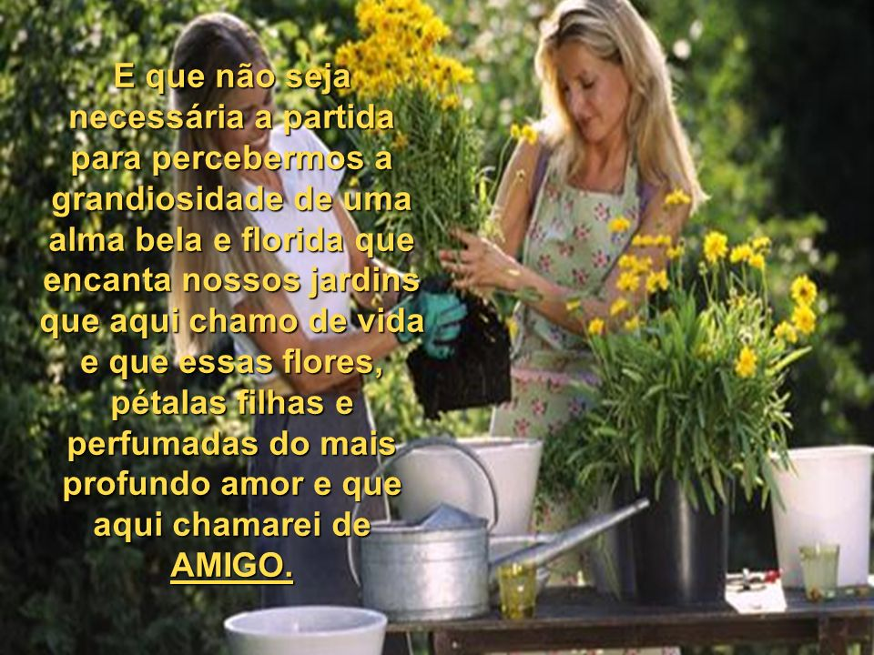 E que não seja necessária a partida para percebermos a grandiosidade de uma alma bela e florida que encanta nossos jardins que aqui chamo de vida e que essas flores, pétalas filhas e perfumadas do mais profundo amor e que aqui chamarei de AMIGO.