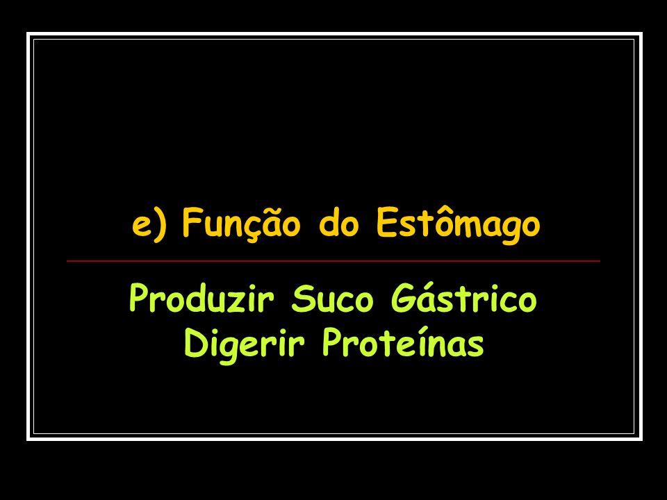 f) Função do Suco Gástrico (pepsina) Digerir Proteínas