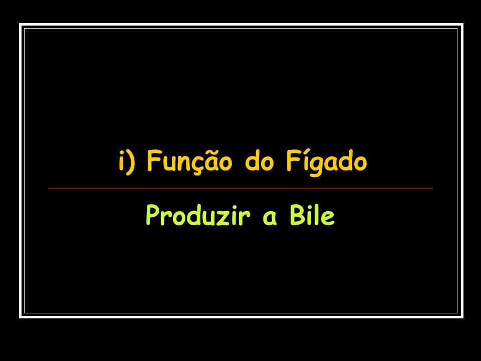 j) Função da Bile Quebrar gorduras (Ação detergente)