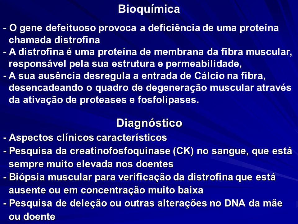 Tratamento - Até o momento não existe nenhum medicamento para bloquear o processo de degeneração do músculo, - A fisioterapia, é de extrema importância pra permitir uma melhor condição da musculatura, - Correção genética com a gentamicina para pacientes com mutação de ponto.
