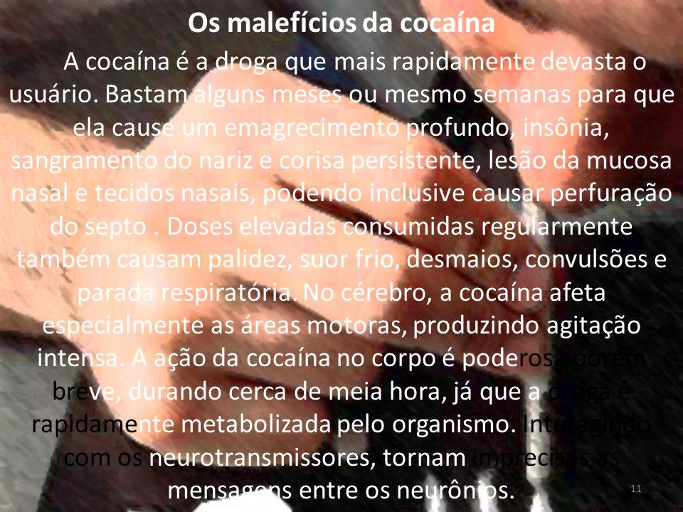 Os malefícios da cocaína Sabe-se que neurotransmissores como a dopamina, noradrenalina e serotonina (agem em regiões do cérebro promovendo, entre outros efeitos, o prazer e a motivação).