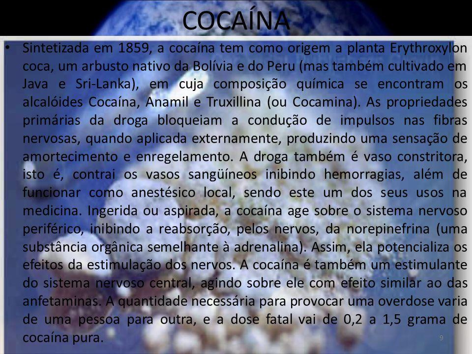 COCAÍNA A possibilidade de overdose, entretanto, é maior quando a droga é injetada diretamente na corrente sangüínea.