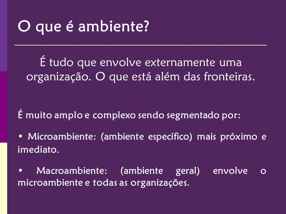 EMPRESA Ambiente Econômico Ambiente Político-Legal Ambiente Tecnológico Ambiente dos Recursos Ambientais Ambiente Sóciocultural Governo Clientes Concorrentes Macroambiente Microambiente Fornecedores Ambiente Demográfico