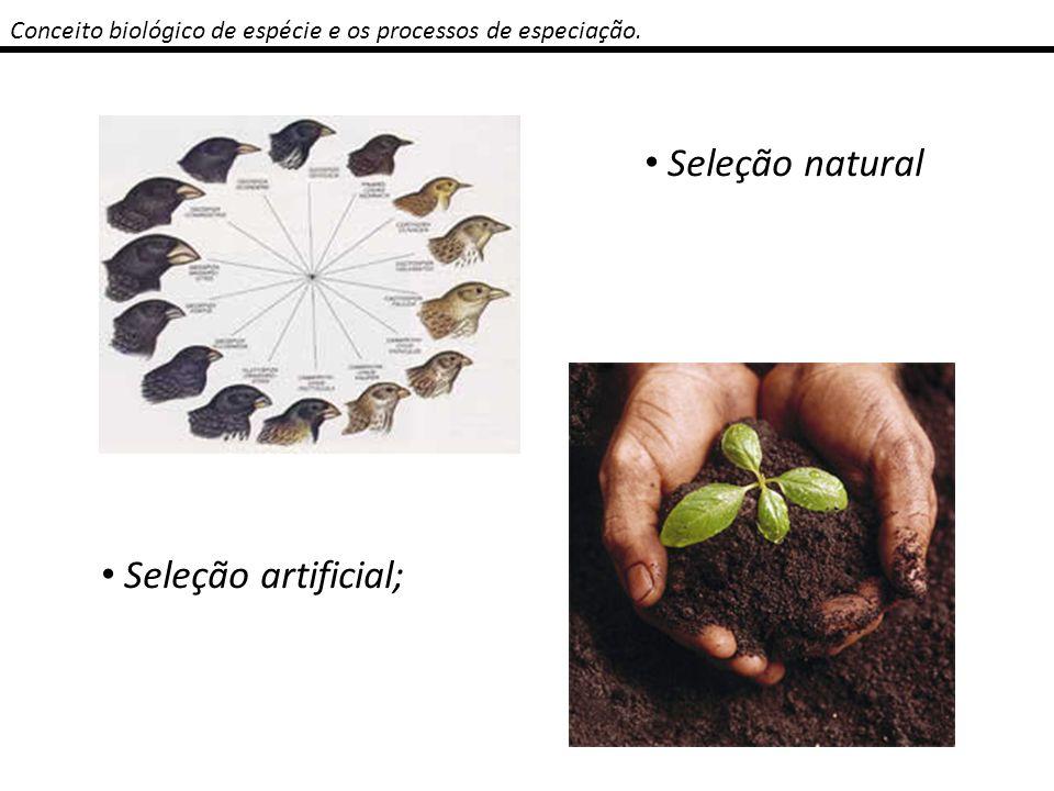 Conceito biológico de espécie e os processos de especiação. Aptidão