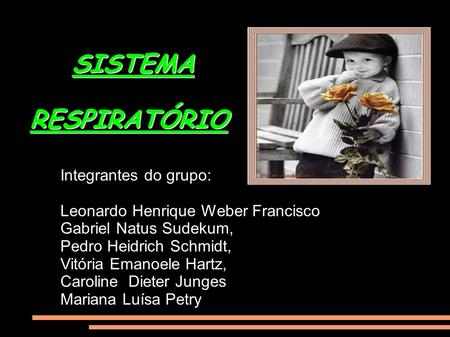 SISTEMA RESPIRATÓRIO Integrantes do grupo: