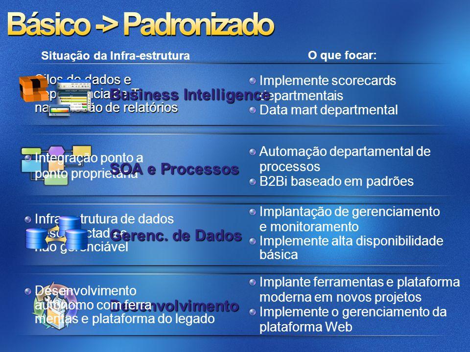 Automação de procesoss departamentais Serviços reutilizáveis limitados Gerenciamento automatizado de banco de dados e serviços padronizados de dados Desenvolvimento com ferramentas e plataforma modernas Múltiplas funções em ALM Scorecards desconectados e dependência de TI para relatórios e análises Situação da Infra-estrutura O que focar: Implemente padrões e diretivas de dados Consolidação de servidores e migração competitiva Orientado a usuários, relatórios integrados Data warehouse centralizado Automatize processos de negócios básicos, entre empresas Defina funções dedicadas em ALM Gerenciamento avançada da plataforma Web Business Intelligence SOA e Processos Gerenc.