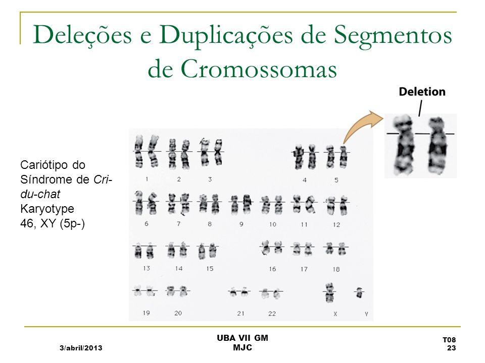 Rearranjos da Estrutura Cromossómica Modificação interna do cromossoma ou junção com parte de outro cromossoma.