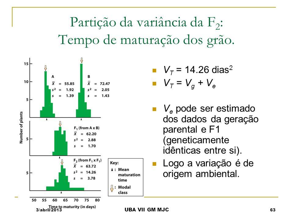 Estimativa de V e Para estimar V e, Média das variâncias das populações parentais e F1 : V e = (V A + V B + V F1 )/3 = (1.92 Dias 2 + 2.05 Dias 2 + 2.88 Dias 2 )/3 = 2.28 dias 2 3/abril/2013 UBA VII GM MJC T10 64