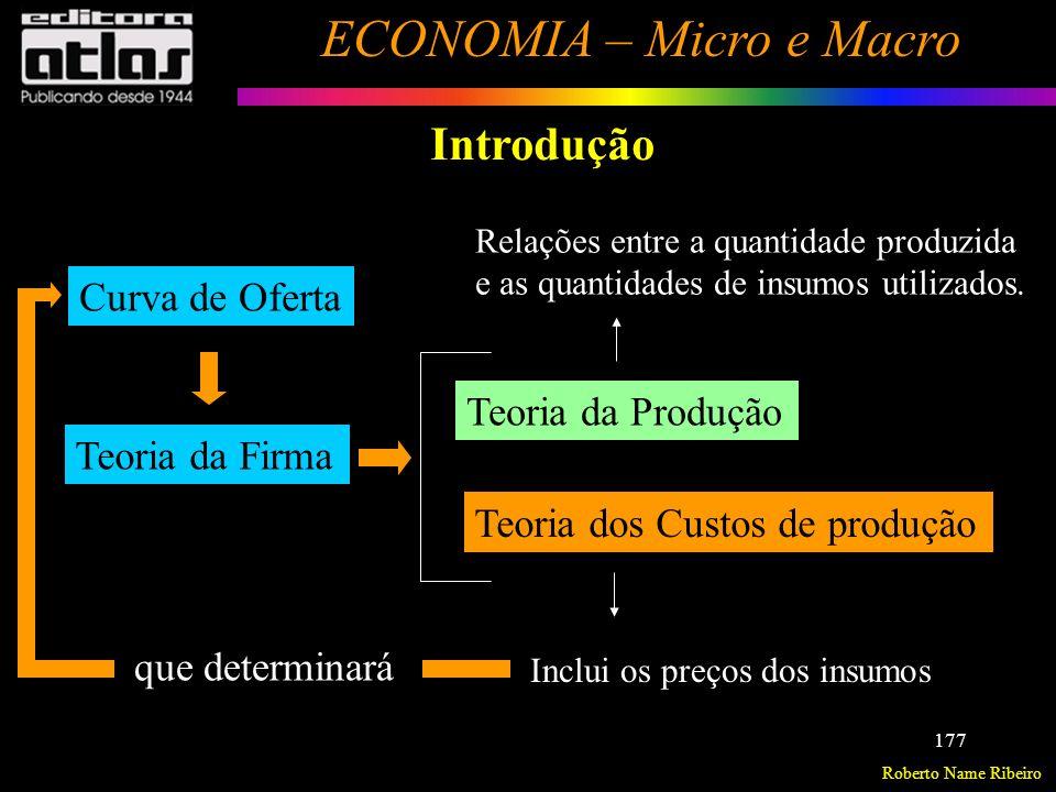 Roberto Name Ribeiro ECONOMIA – Micro e Macro 178 Custos de Produção Avaliação privada e avaliação social Avaliação Privada – Avaliação financeira, específica da empresa.