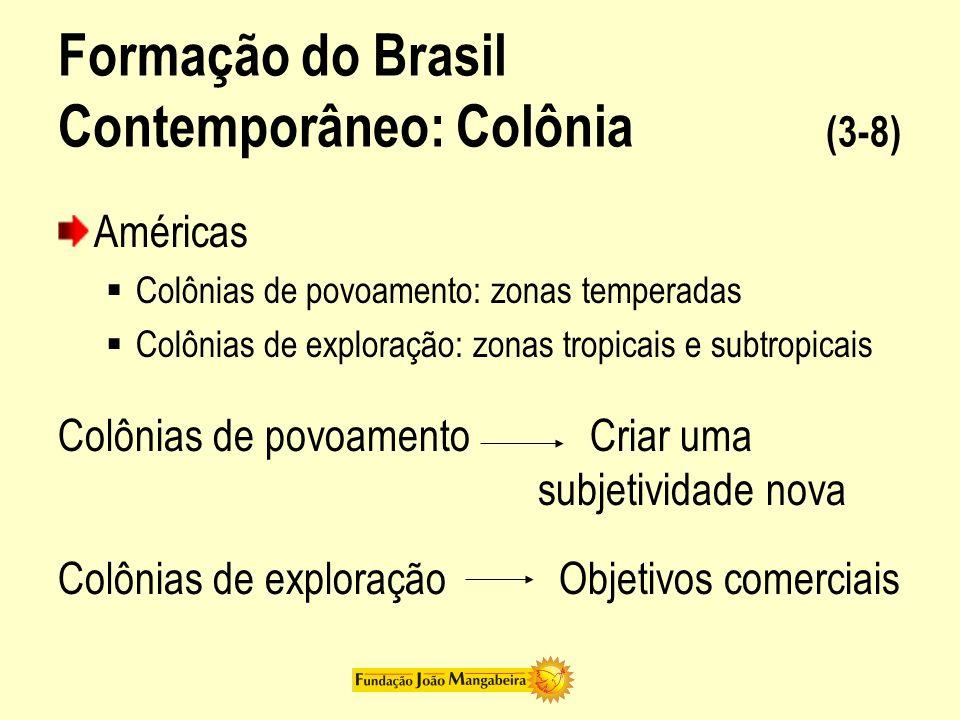 Formação do Brasil Contemporâneo: Colônia (4-8) Brasil colônia = uma vasta empresa comercial Sentido da colonização Produzir bens demandados pelo mercado externo em grandes unidades trabalhadas pelo braço escravo Sentido da colonizaçãoSociedade do Brasil colônia