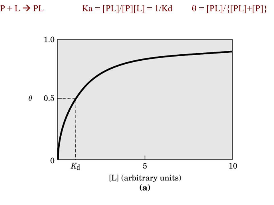 Ka = constante de associação, Kd = constante de dissociação = 1/Ka Fração de sítios ocupados = [PL]/{[PL]+[P]} = Ka[P][L]/{Ka[P][L]+[P]} = Ka[L]/{Ka[L]+1} = [L]/{[L]+1/Ka} = [L]/{[L]+Kd]}equação tipo x = y/(y+z) descreve uma hipérbola Quando [L]=Kd=1/Ka, = 0,5 (50% dos sítios ocupados)