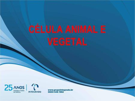 CÉLULA ANIMAL E VEGETAL