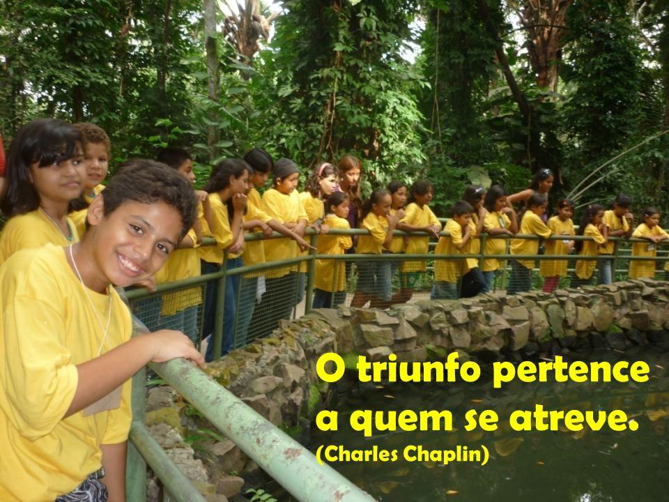 Bom mesmo é ir a luta com determinação e abraçar a vida com paixão. (Charles Chaplin)