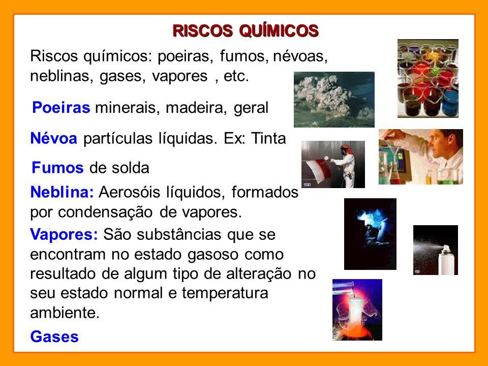 RISCOS BIOLÓGICOS Microorganismos indesejáveis: bactérias, fungos, protozoários, bacilos.