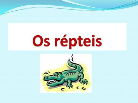 Significado do nome A classe Reptilia (do latim reptum = rastejar)