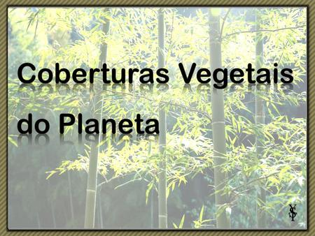 Coberturas Vegetais do Planeta