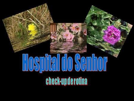 Hospital do Senhor check-up de rotina.