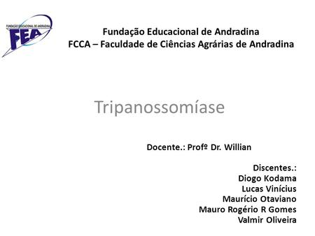 Docente.: Profº Dr. Willian