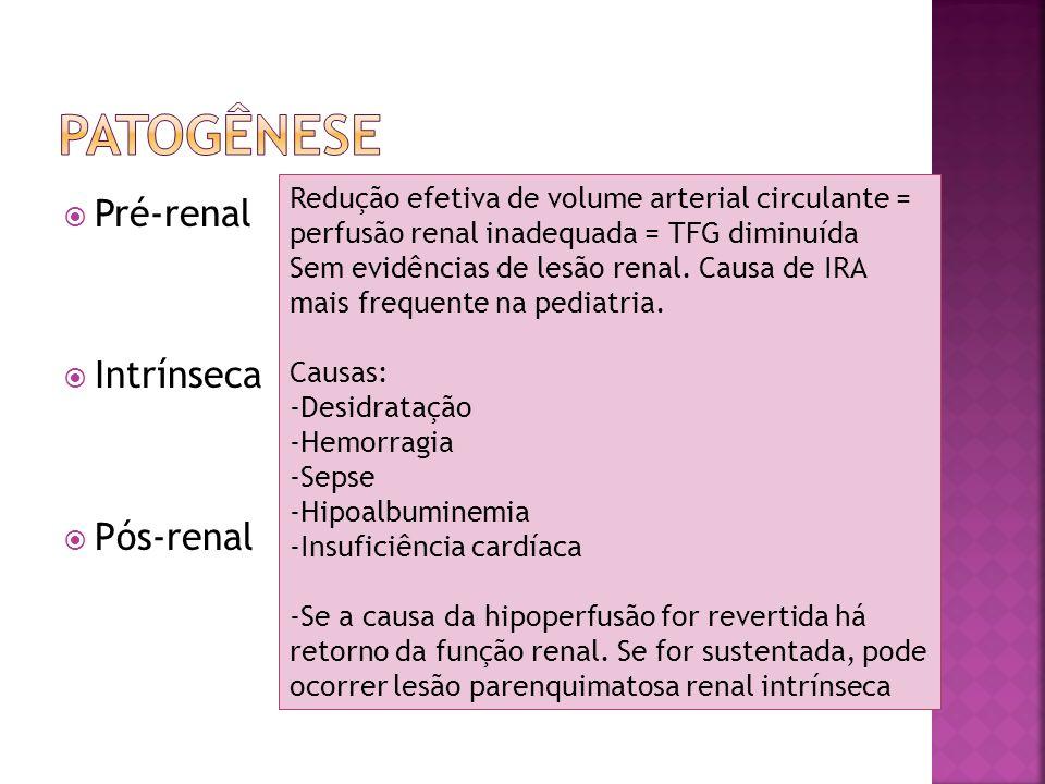 Pré-renal Intrínseca Pós-renal Ocorre lesão do parênquima renal.
