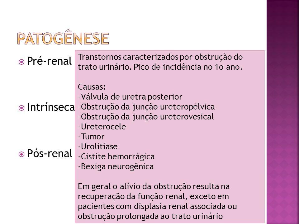 Recém-nascidoLactentePré-escolar e escolar - Desidratação - Hemorragia - Sepse - Asfixia perinatal - Trombose da veia renal e da artéria renal - Válvula de uretra posterior - Estenose de junção pieloureteral bilateral - Gastrenterite aguda com desidratação grave - Necrose tubular aguda - Síndrome hemolítico- urêmica -Glomerulonefrite aguda