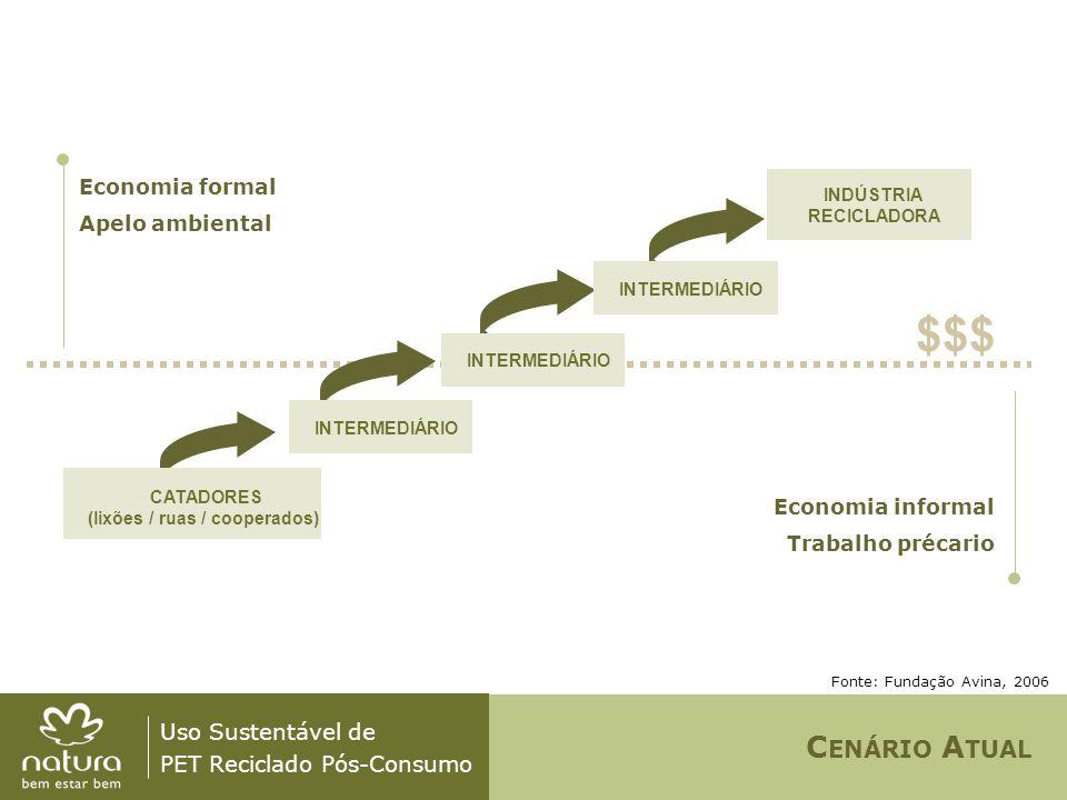 Uso Sustentável de PET Reciclado Pós-Consumo Fonte: Fundação Avina / Pangea, 2006 CATADORES ORGANIZADOS (cooperativas) MOVIMENTO COOPERATIVA INDUSTRIAL INDÚSTRIA RECICLADORA GOVERNO DOADORESOSCs OUTROS C ENÁRIO P ROPOSTO & F UTURO