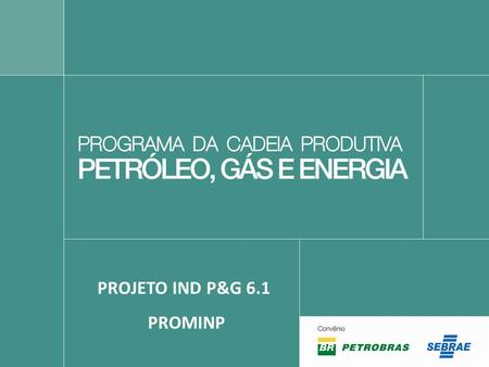 PROJETO IND P&G 6.1 PROMINP.