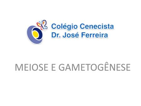 MEIOSE E GAMETOGÊNESE.