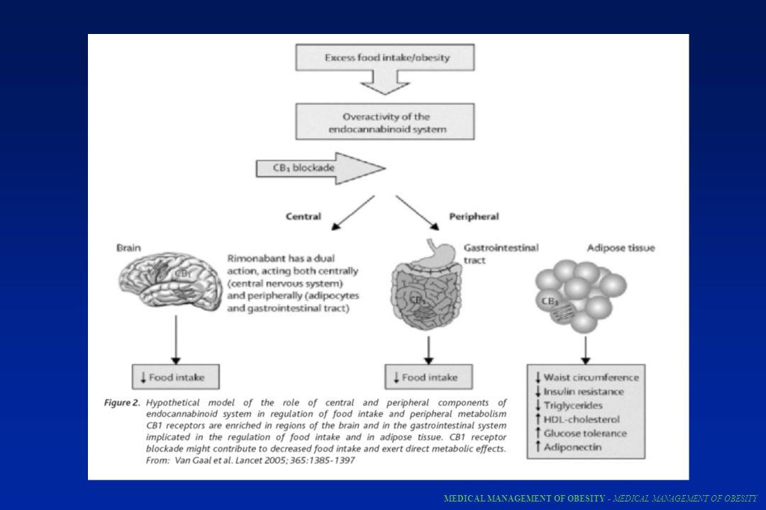 Anfetaminas Inibidores da recaptação de serotonina/noradrenalina Inibidores da absorção de gordura (orlistat) Agonistas de receptores beta 3 Antagonistas de receptores endocanabinóides Hormonios tireoidianos Diuréticos Laxantes Agonistas de leptina Agonistas de receptores melanocortin-3