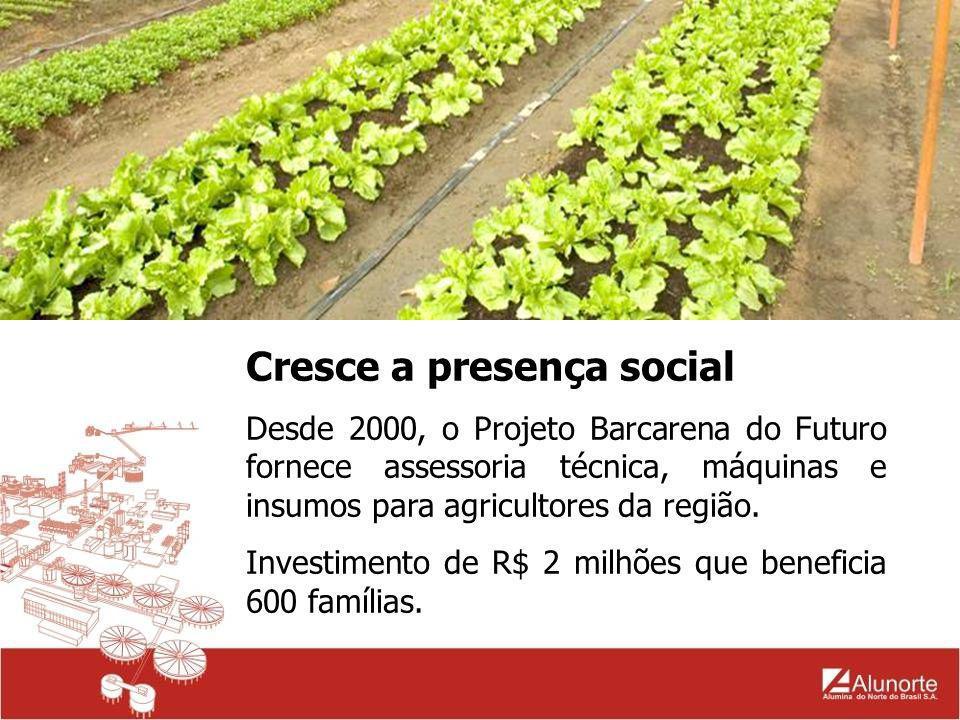Cresce a presença social Resultados do projeto Barcarena do Futuro: criação de cooperativa para comercializar a produção.