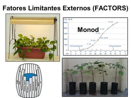 Fatores Limitantes Externos (FACTORS)