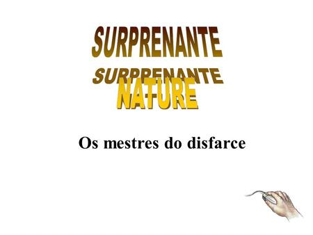 SURPRENANTE NATURE Os mestres do disfarce.