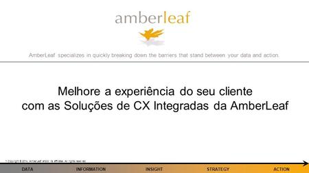 AmberLeaf specializes in quickly breaking down the barriers that stand between your data and action. Copyright © 2014, AmberLeaf and/or its affiliates.