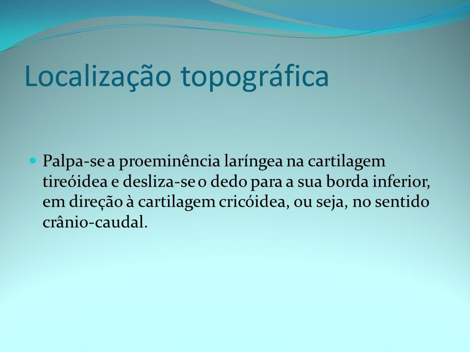 Localização topográfica Sente-se uma pequena depressão de consistência mais elástica, seguida de uma elevação de consistência óssea (cartilagem cricóide).