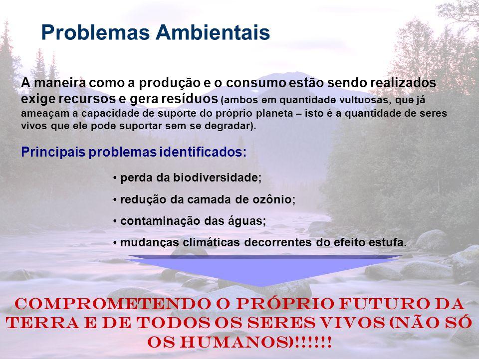 16 Principais questões ambientais As questões sócio-ambientais podem ser analisadas, de forma resumida, de acordo com cinco fatores principais: 1.