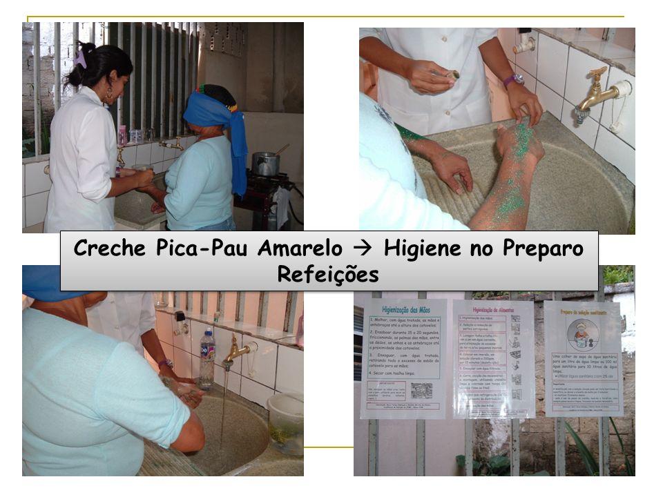 Creche Pica-Pau Amarelo Higiene no Preparo Refeições
