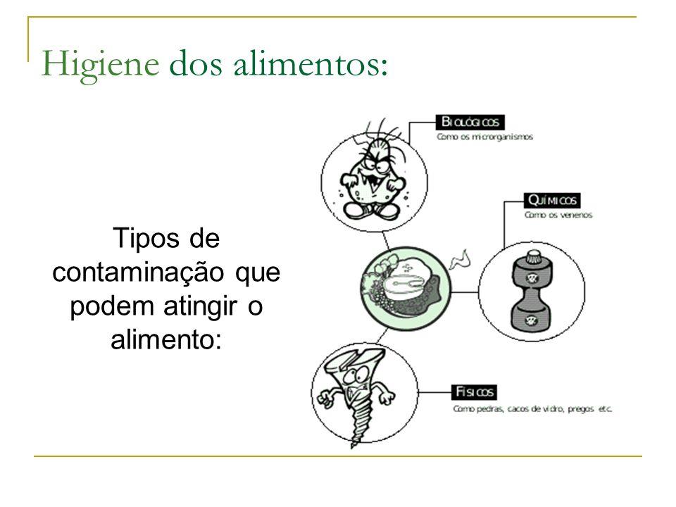 Higiene dos alimentos: Tipos de contaminação que podem atingir o alimento: