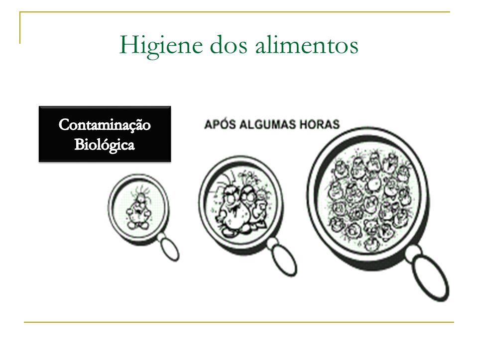 Higiene dos alimentos
