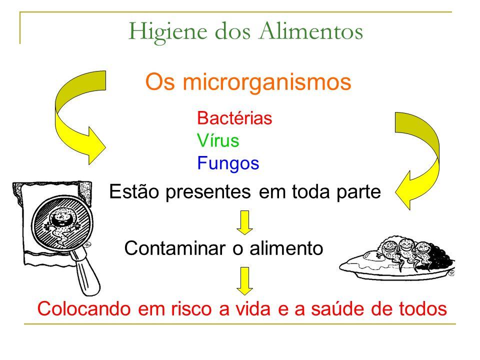 Higiene dos Alimentos Os microrganismos Bactérias Vírus Fungos Estão presentes em toda parte Contaminar o alimento Colocando em risco a vida e a saúde de todos