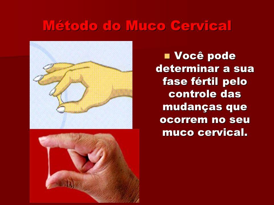 Método Sintotérmico É a combinação do Método do Muco Cervical com o da Temperatura Basal Corporal É a combinação do Método do Muco Cervical com o da Temperatura Basal Corporal