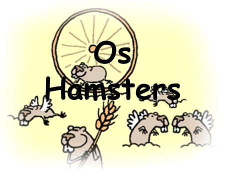 Os Hamsters.