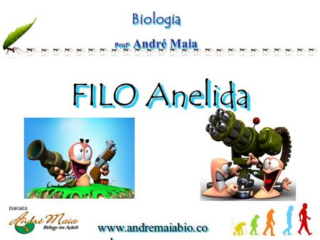 Www.andremaiabio.co m.br Biologia Profº André Maia Biologia FILO Anelida FILO Anelida.