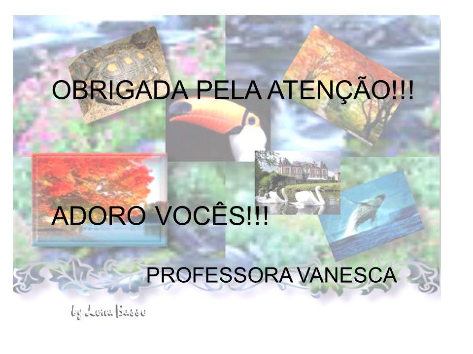 OBRIGADA PELA ATENÇÃO !!! OBRIGADA PELA ATENÇÃO!!! PROFESSORA VANESCA