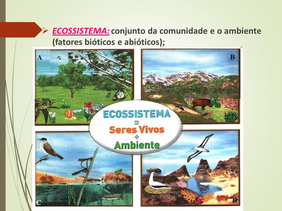 ECOSSISTEMA: conjunto da comunidade e o ambiente (fatores bióticos e abióticos);